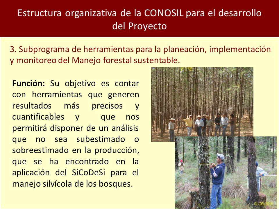 Estructura organizativa de la CONOSIL para el desarrollo del Proyecto 3.