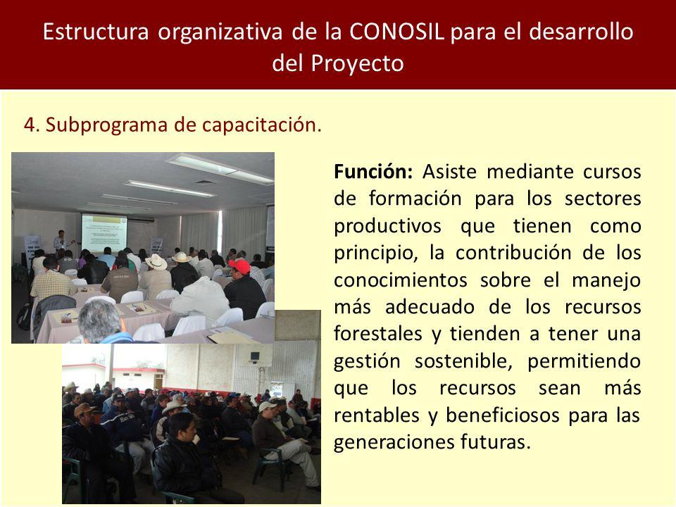 Estructura organizativa de la CONOSIL para el desarrollo del Proyecto 4.