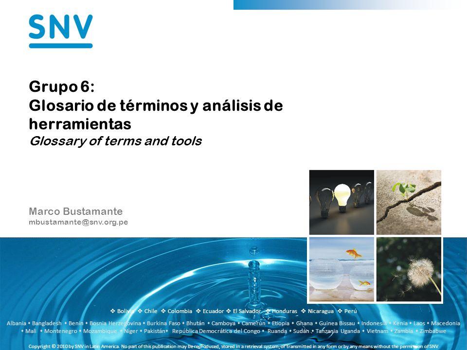 Bolivia Chile Colombia Ecuador El Salvador Honduras Nicaragua Perú Copyright © 2010 by SNV in Latin America.