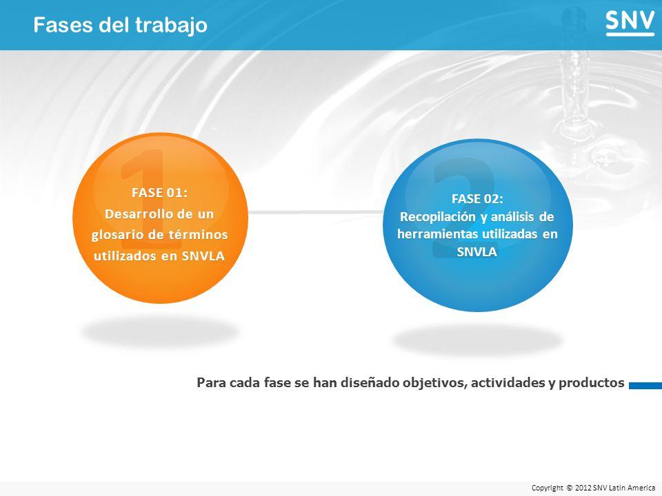 Copyright © 2012 SNV Latin America Fases del trabajo Para cada fase se han diseñado objetivos, actividades y productos 1 FASE 01: Desarrollo de un glosario de términos utilizados en SNVLA 2 FASE 02: Recopilación y análisis de herramientas utilizadas en SNVLA