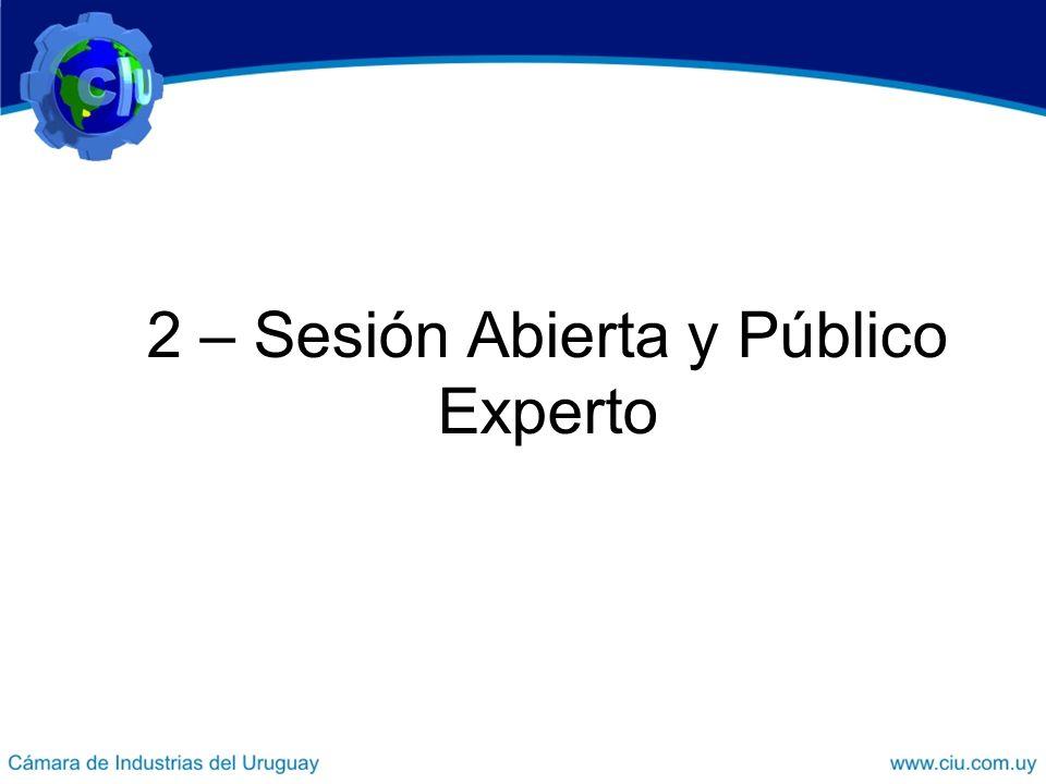 2 – Sesión Abierta y Público Experto