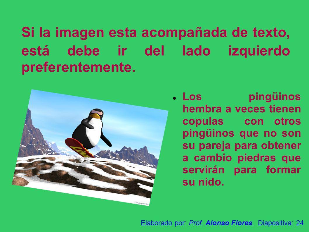 Si la imagen esta acompañada de texto, está debe ir del lado izquierdo preferentemente. Los pingüinos hembra a veces tienen copulas con otros pingüino