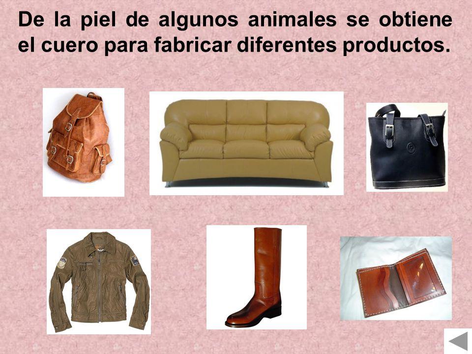 De la piel de algunos animales se obtiene el cuero para fabricar diferentes productos.