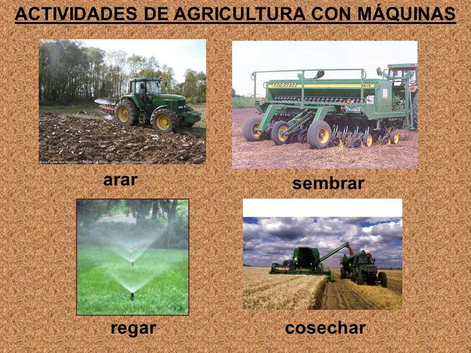 ACTIVIDADES DE AGRICULTURA CON MÁQUINAS arar sembrar regarcosechar