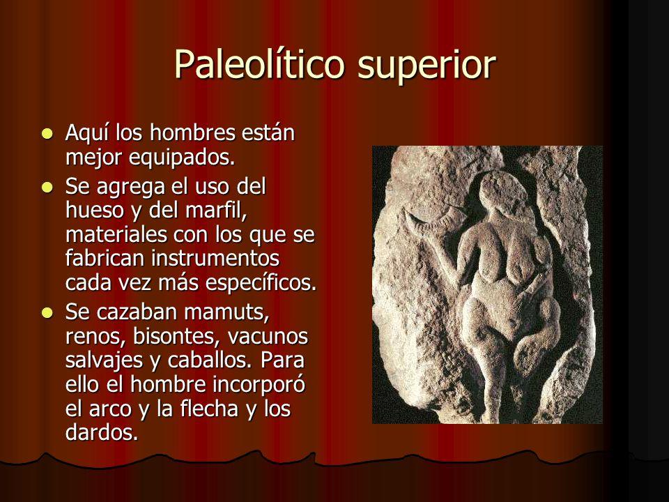 Paleolítico superior Aquí los hombres están mejor equipados. Aquí los hombres están mejor equipados. Se agrega el uso del hueso y del marfil, material