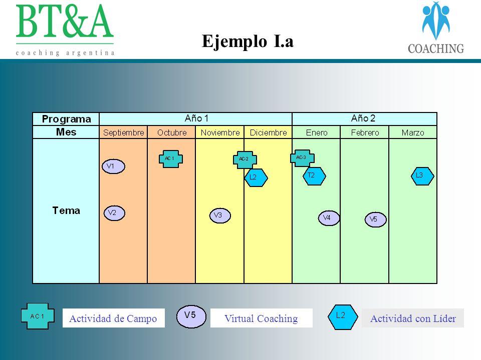 Ejemplo I.a Actividad de CampoVirtual CoachingActividad con Líder Año 1Año 2