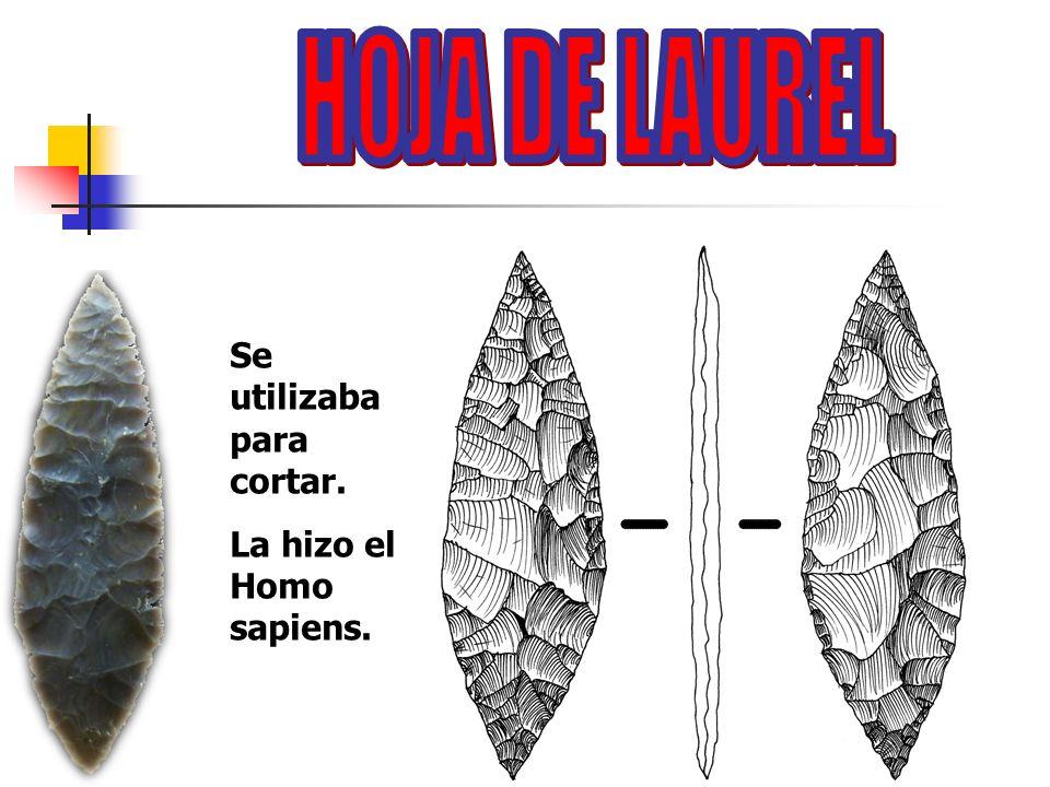 Se utilizaba para cortar. La hizo el Homo sapiens.