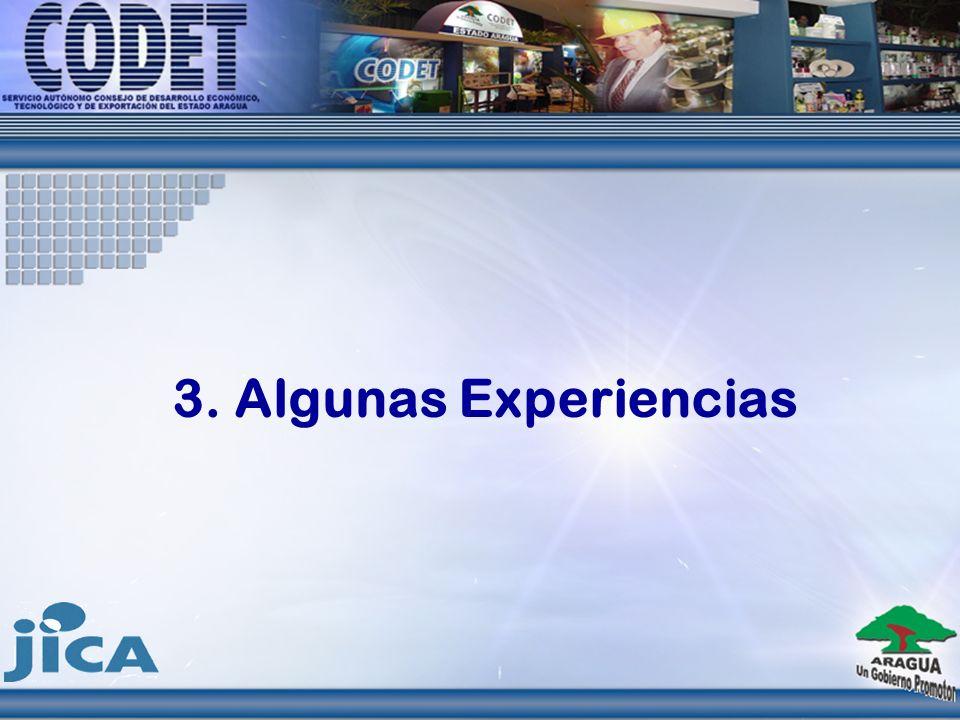 3. Algunas Experiencias