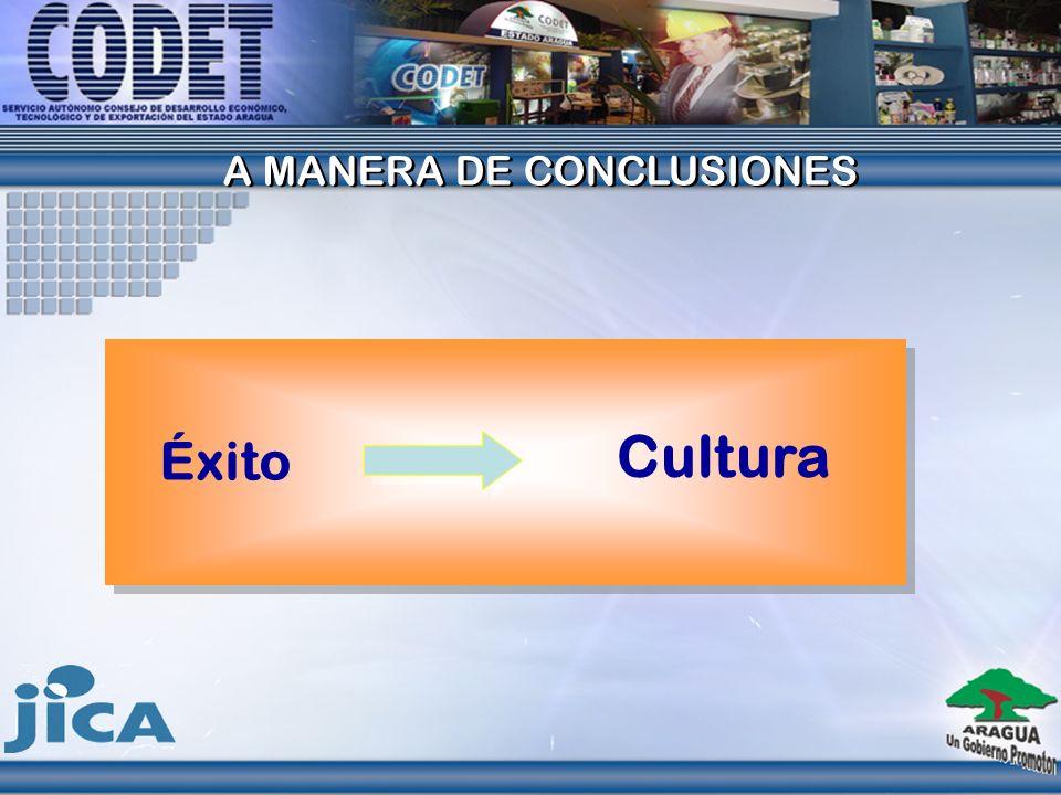 Éxito Cultura A MANERA DE CONCLUSIONES A MANERA DE CONCLUSIONES