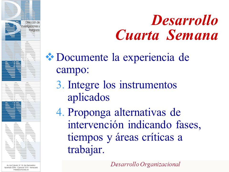 Desarrollo Organizacional Documente la experiencia de campo: 3.Integre los instrumentos aplicados 4.Proponga alternativas de intervención indicando fa