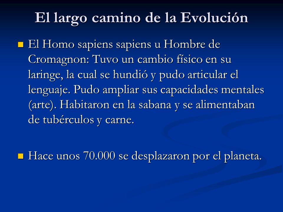 El largo camino de la Evolución El Homo sapiens sapiens u Hombre de Cromagnon: Tuvo un cambio físico en su laringe, la cual se hundió y pudo articular el lenguaje.