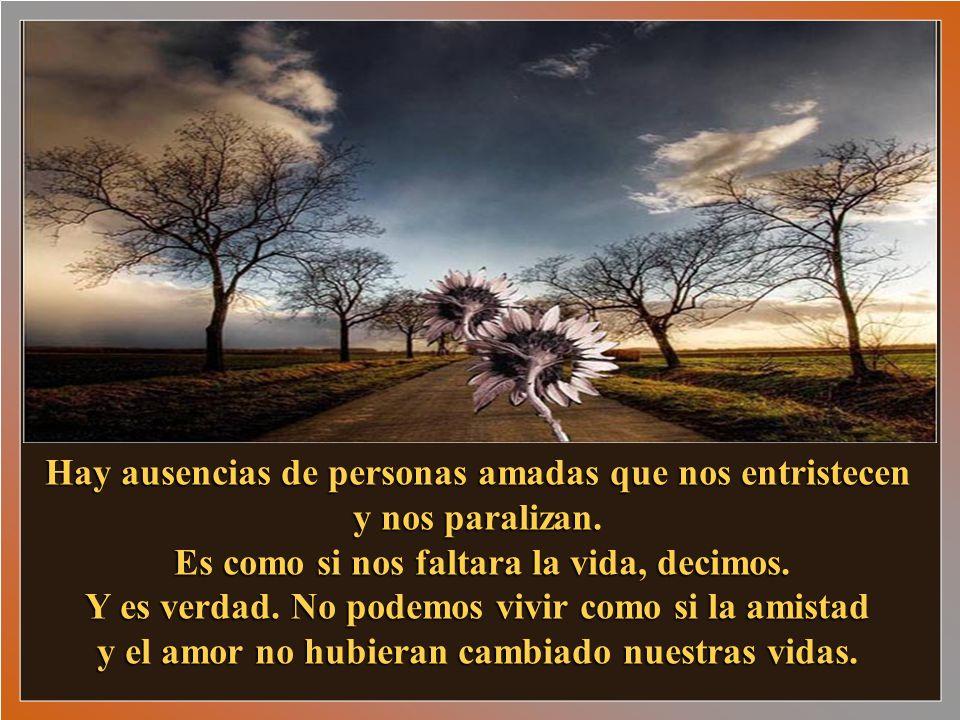 Hay ausencias de personas amadas que nos entristecen y nos paralizan.