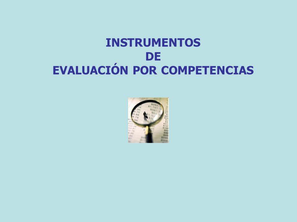 componentes básicos: La competencia Momento de la evaluación Los alumnos La descripción de lo observado La interpretación de lo observado Actividad evaluada REGISTRO DESCRIPTIVO El indicador