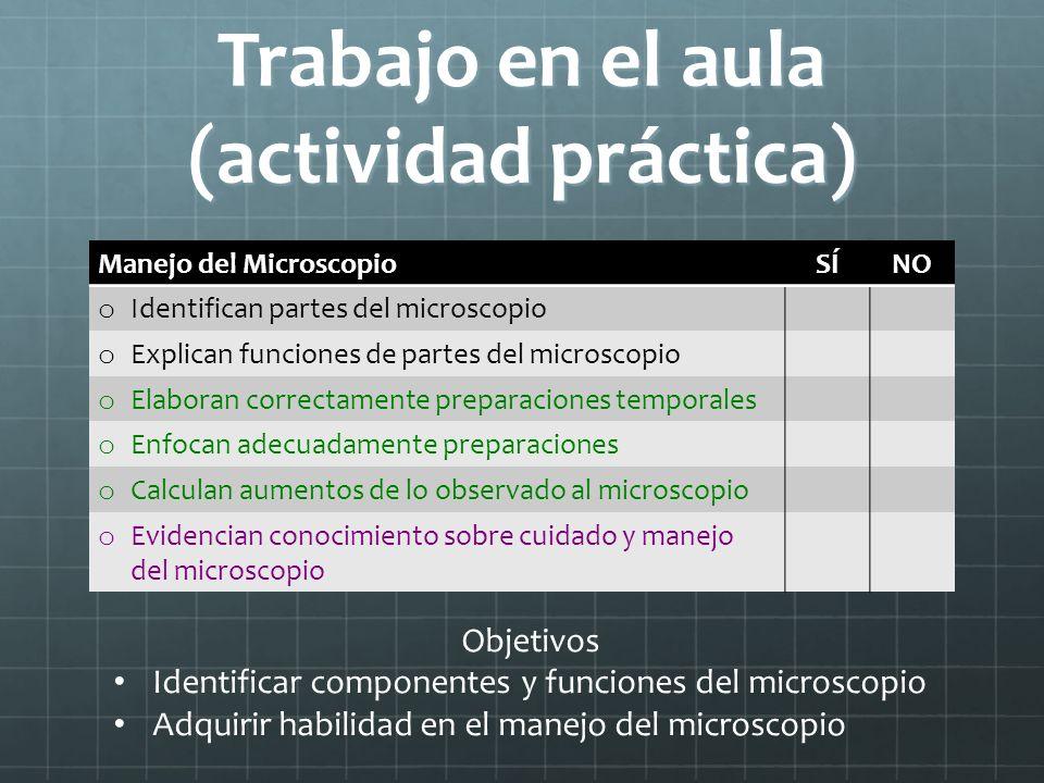 Trabajo en el aula (actividad práctica) Manejo del MicroscopioSÍNO o Identifican partes del microscopio o Explican funciones de partes del microscopio