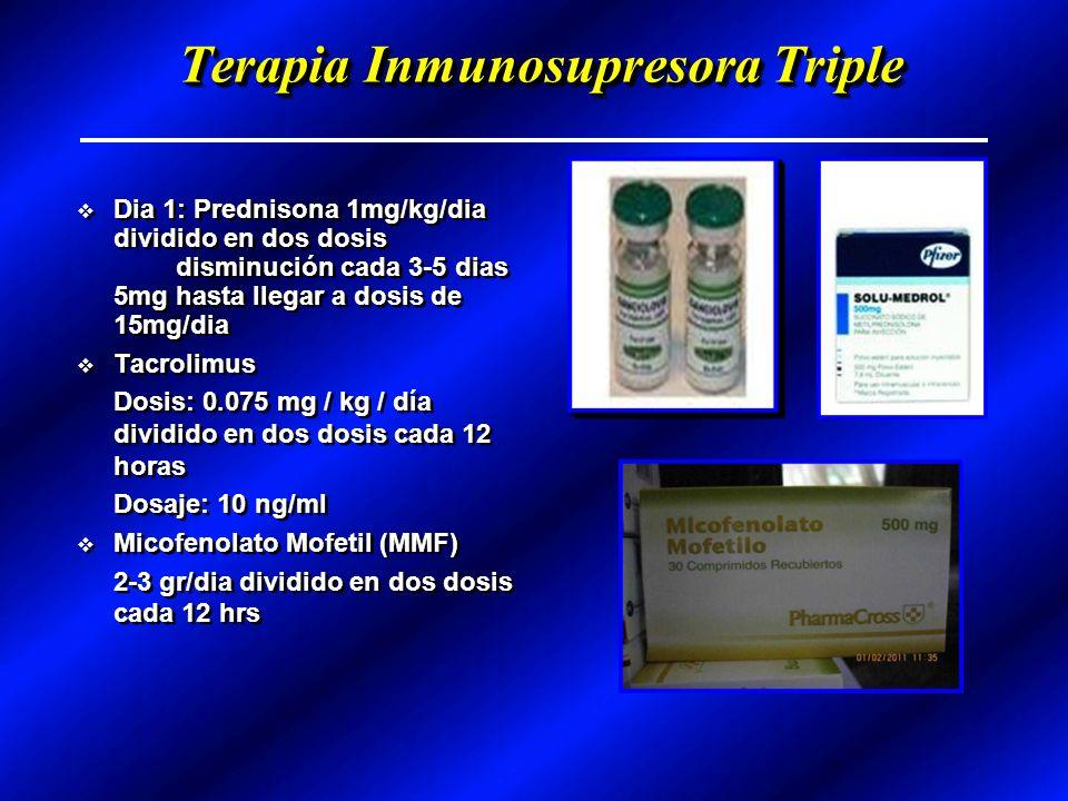 Terapia Inmunosupresora Triple Dia 1: Prednisona 1mg/kg/dia dividido en dos dosis disminución cada 3-5 dias 5mg hasta llegar a dosis de 15mg/dia Tacrolimus Dosis: 0.075 mg / kg / día dividido en dos dosis cada 12 horas Dosaje: 10 ng/ml Micofenolato Mofetil (MMF) 2-3 gr/dia dividido en dos dosis cada 12 hrs Dia 1: Prednisona 1mg/kg/dia dividido en dos dosis disminución cada 3-5 dias 5mg hasta llegar a dosis de 15mg/dia Tacrolimus Dosis: 0.075 mg / kg / día dividido en dos dosis cada 12 horas Dosaje: 10 ng/ml Micofenolato Mofetil (MMF) 2-3 gr/dia dividido en dos dosis cada 12 hrs
