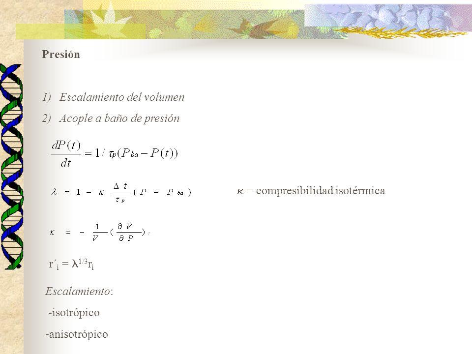 Presión 1)Escalamiento del volumen 2)Acople a baño de presión = compresibilidad isotérmica r´ i = 1/3 r i Escalamiento: -isotrópico -anisotrópico