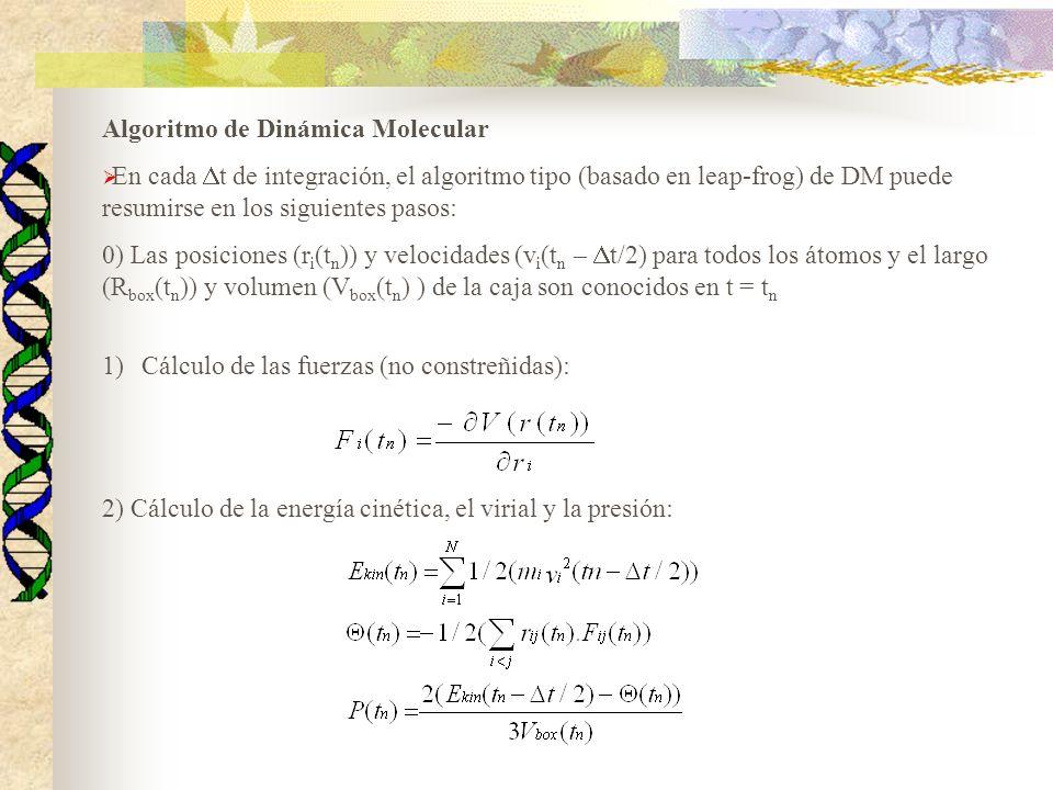 Algoritmo de Dinámica Molecular En cada t de integración, el algoritmo tipo (basado en leap-frog) de DM puede resumirse en los siguientes pasos: 0) La