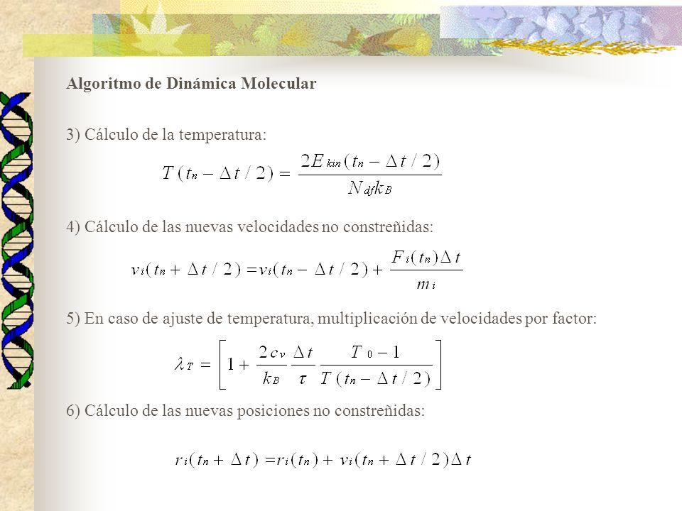 Algoritmo de Dinámica Molecular 3) Cálculo de la temperatura: 4) Cálculo de las nuevas velocidades no constreñidas: 5) En caso de ajuste de temperatur