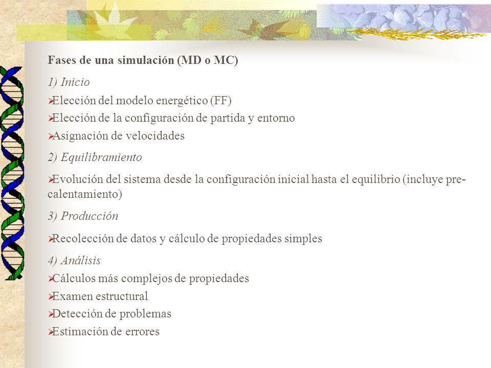 Fases de una simulación (MD o MC) 1) Inicio Elección del modelo energético (FF) Elección de la configuración de partida y entorno Asignación de veloci