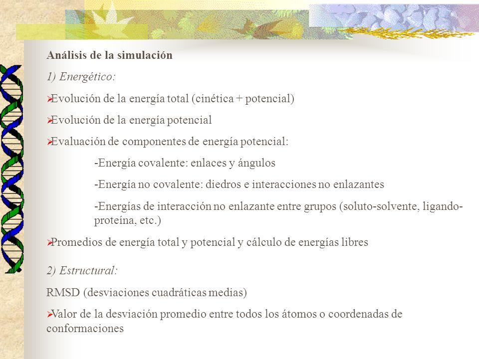 Análisis de la simulación 1) Energético: Evolución de la energía total (cinética + potencial) Evolución de la energía potencial Evaluación de componen