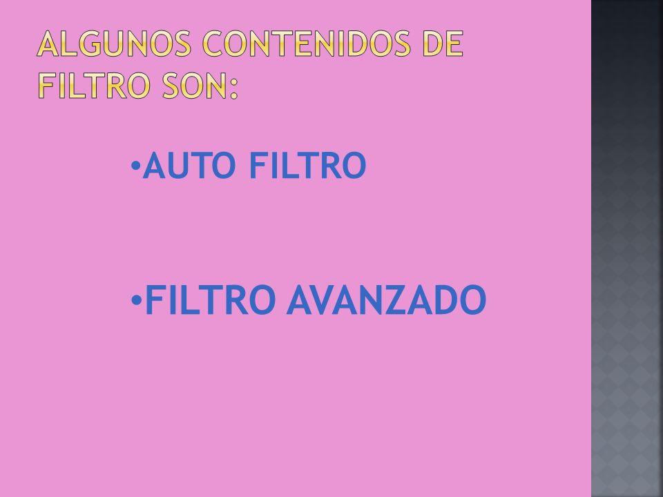AUTO FILTRO AVANZADO