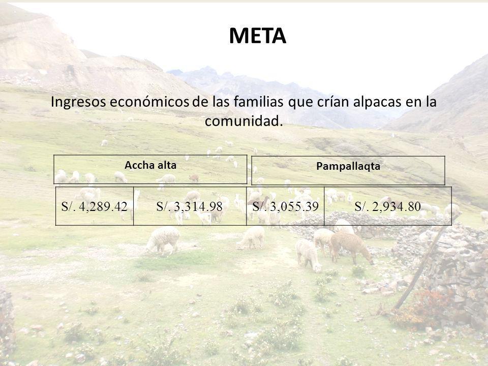 Ingresos económicos de las familias que crían alpacas en la comunidad. META S/. 4,289.42S/. 3,314.98S/. 3,055.39S/. 2,934.80 Accha alta Pampallaqta