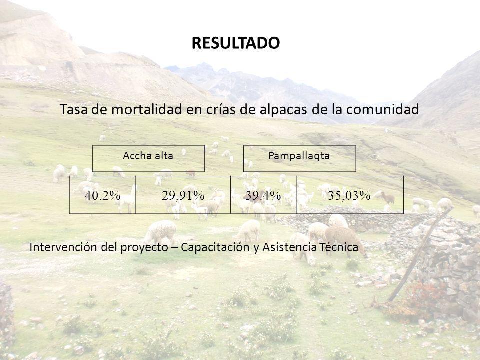 Tasa de mortalidad en crías de alpacas de la comunidad Intervención del proyecto – Capacitación y Asistencia Técnica 40.2%29,91%39.4%35,03% Accha alta