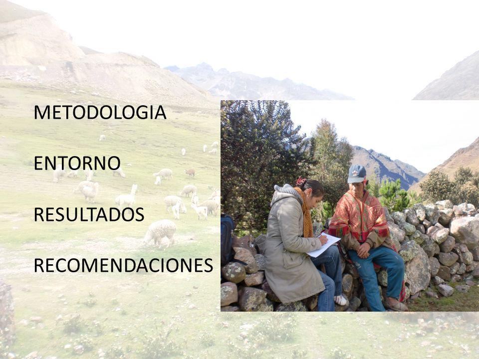 METODOLOGIA Universo / fuente 121 familias de las Comunidades Campesinas de Accha alta y Pampallaqta 12 las familias encuestadas que difieren de la lista original alcanzada por el PDA Instrumentos 121 Encuestas 05 Grupos Focales (Sihuamayo, Ancasmarca, Pampaccocha, Acchapampa y Chaypa)