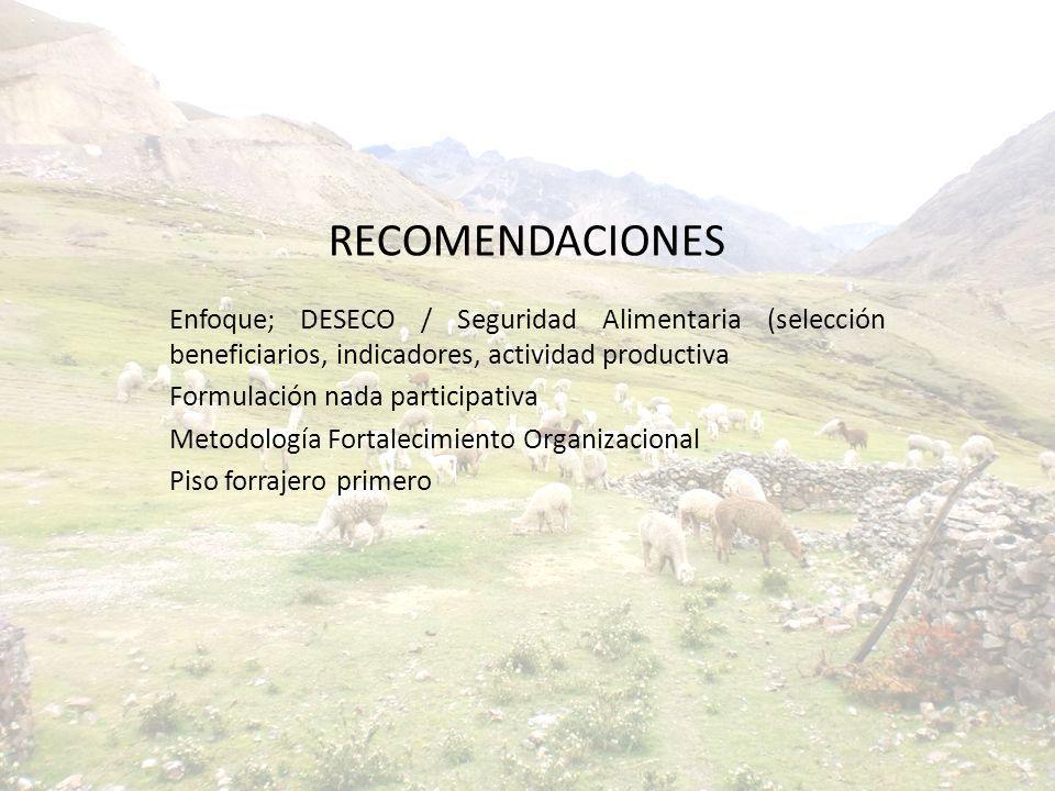 RECOMENDACIONES Enfoque; DESECO / Seguridad Alimentaria (selección beneficiarios, indicadores, actividad productiva Formulación nada participativa Met