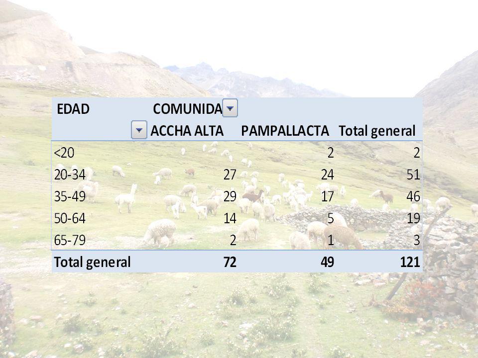 Organizaciones alpaqueras de las comunidades de Accha Alta y Pampallacta cuentan con reglamento interno aprobado participativamente Actividades del proyecto Intervención no obedece a una metodología 0%100%0%100% PRODUCTO 1
