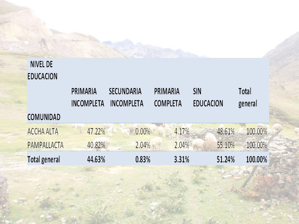 Cobertizos son construidos 12 familias no estaban en la lista Entrevista se realizó en Focus, Asamblea y Cabaña 053049 PRODUCTO 2