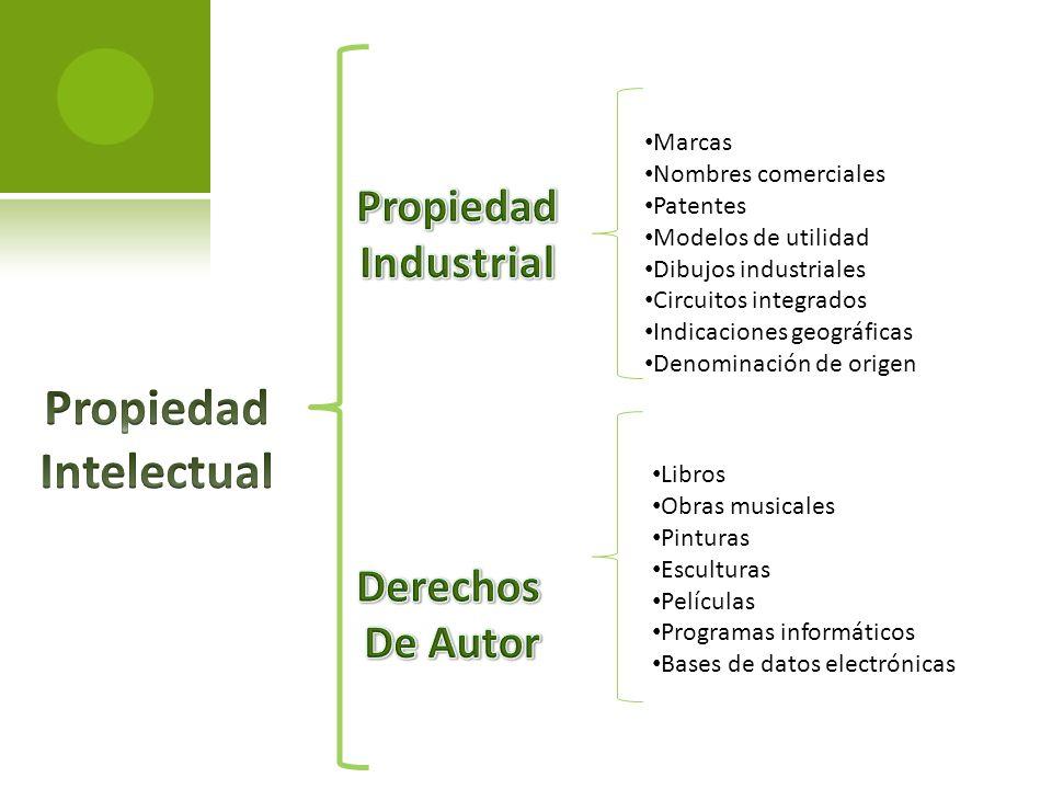 Marcas Nombres comerciales Patentes Modelos de utilidad Dibujos industriales Circuitos integrados Indicaciones geográficas Denominación de origen Libr