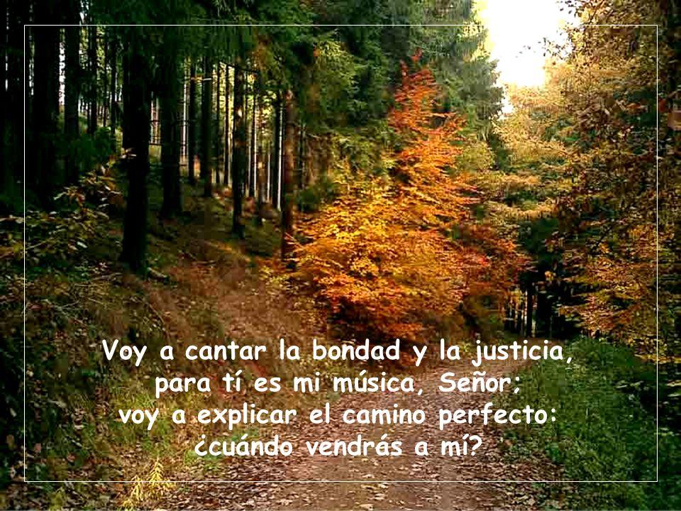Voy a cantar la bondad y la justicia, para tí es mi música, Señor; voy a explicar el camino perfecto: ¿cuándo vendrás a mí?