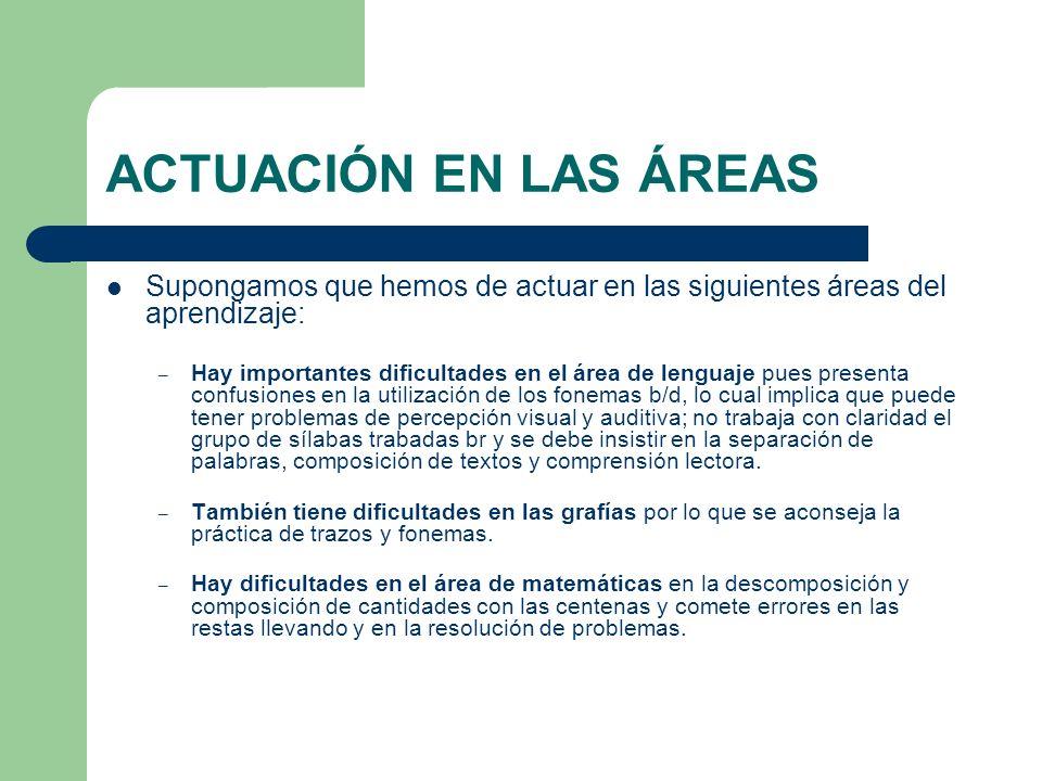 ACTUACIÓN EN LAS ÁREAS Supongamos que hemos de actuar en las siguientes áreas del aprendizaje: – Hay importantes dificultades en el área de lenguaje p