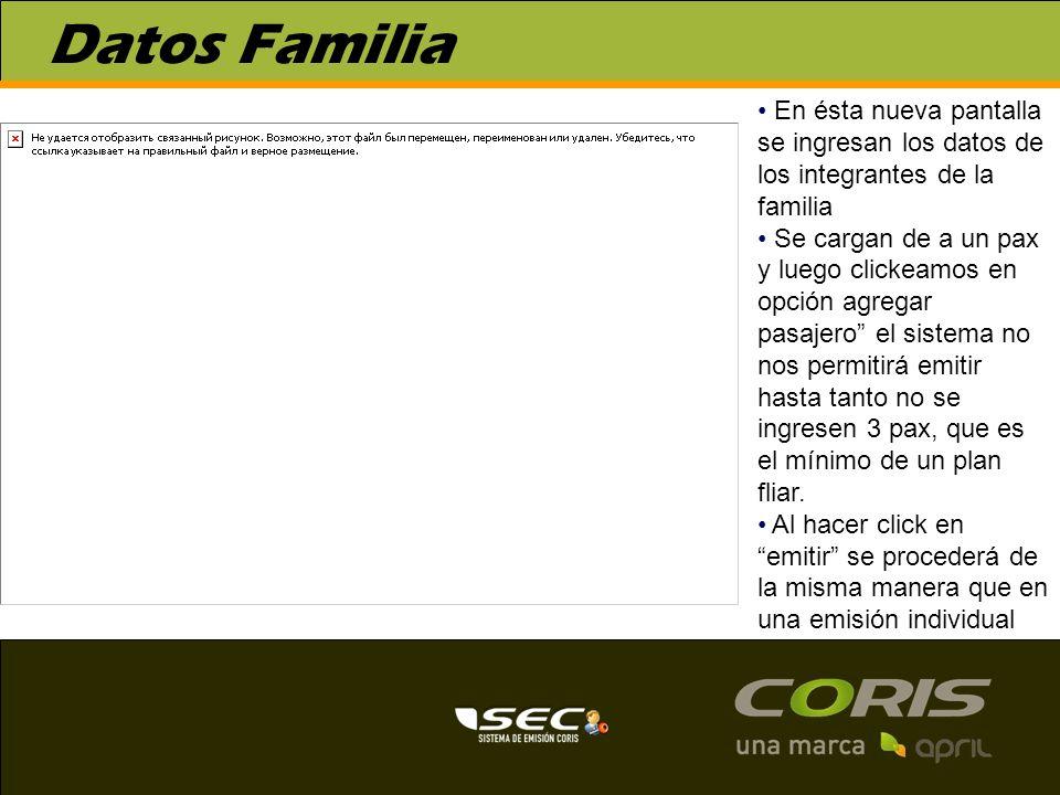 Datos Familia En ésta nueva pantalla se ingresan los datos de los integrantes de la familia Se cargan de a un pax y luego clickeamos en opción agregar