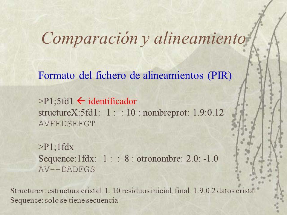 Comparación y alineamiento Formato del fichero de alineamientos (PIR) >P1;5fd1 identificador structureX:5fd1: 1 : : 10 : nombreprot: 1.9:0.12 AVFEDSEFGT >P1;1fdx Sequence:1fdx: 1 : : 8 : otronombre: 2.0: -1.0 AV--DADFGS Structurex: estructura cristal.