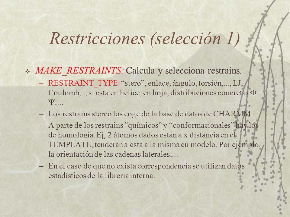 Restricciones (selección 1) MAKE_RESTRAINTS: Calcula y selecciona restrains.