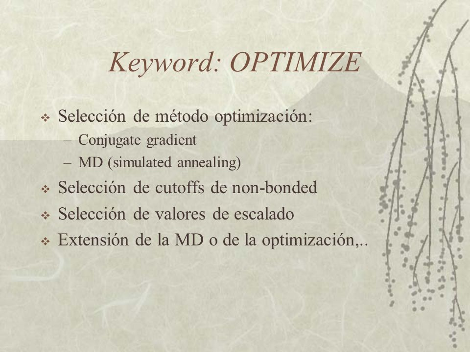 Keyword: OPTIMIZE Selección de método optimización: –Conjugate gradient –MD (simulated annealing) Selección de cutoffs de non-bonded Selección de valo