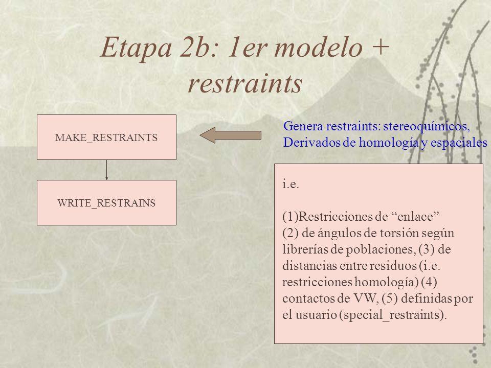 Etapa 2b: 1er modelo + restraints WRITE_RESTRAINS MAKE_RESTRAINTS Genera restraints: stereoquímicos, Derivados de homología y espaciales i.e.