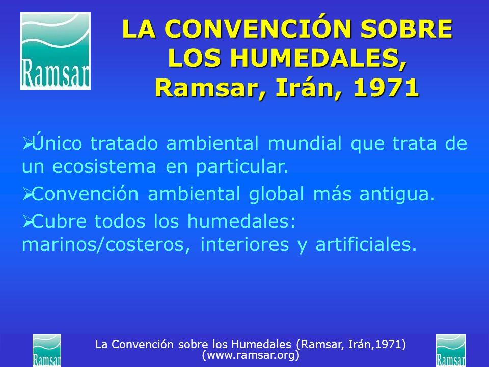 La Convención sobre los Humedales (Ramsar, Irán,1971) (www.ramsar.org) LA CONVENCIÓN SOBRE LOS HUMEDALES, Ramsar, Irán, 1971 Único tratado ambiental m