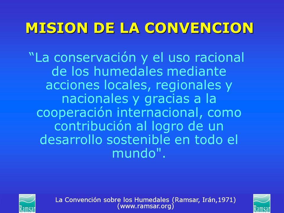 La Convención sobre los Humedales (Ramsar, Irán,1971) (www.ramsar.org) MISION DE LA CONVENCION La conservación y el uso racional de los humedales medi