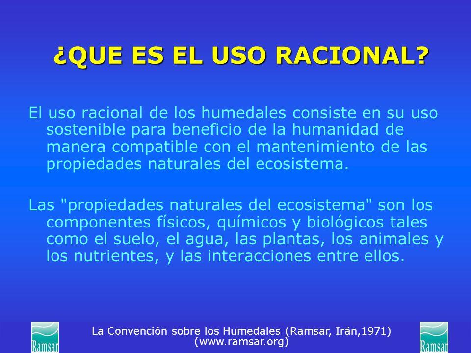 La Convención sobre los Humedales (Ramsar, Irán,1971) (www.ramsar.org) ¿QUE ES EL USO RACIONAL? El uso racional de los humedales consiste en su uso so