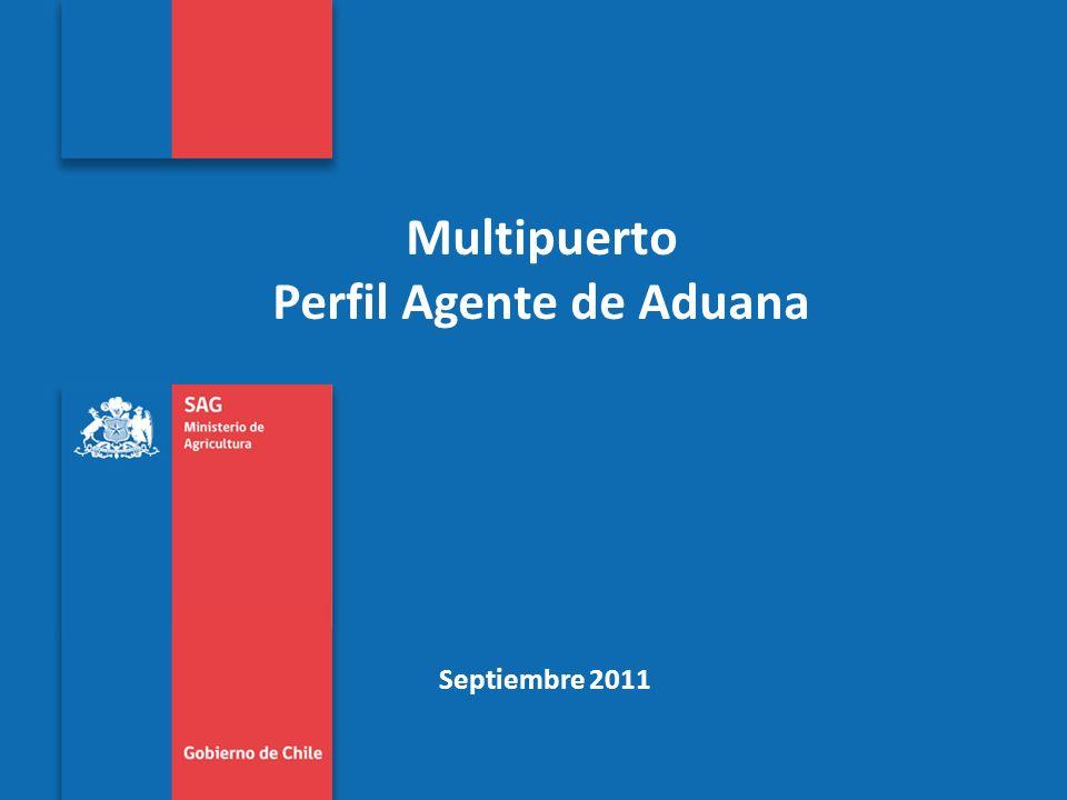 Subtitulo de la presentación en una línea Multipuerto Perfil Agente de Aduana Septiembre 2011