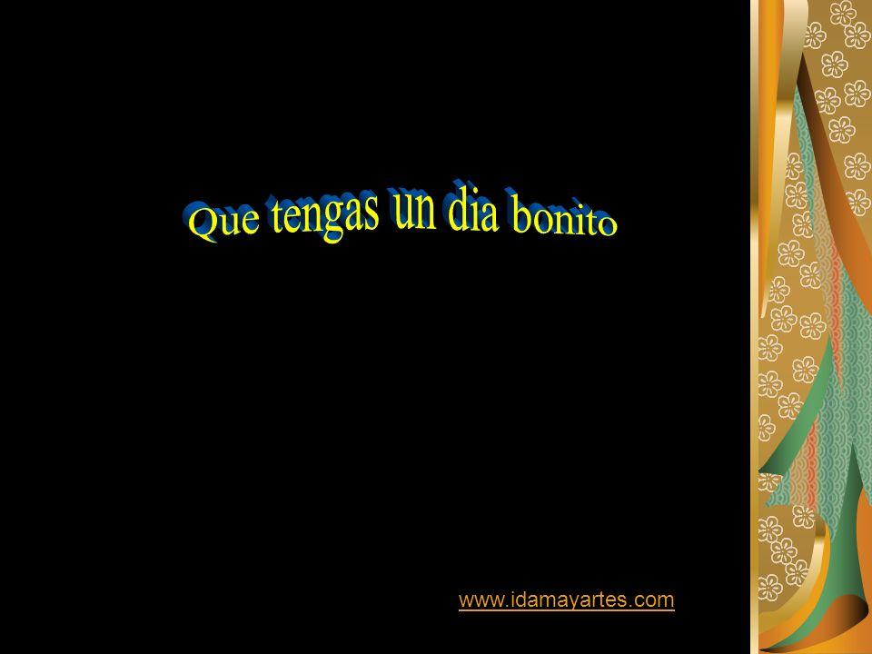 www.idamayartes.com