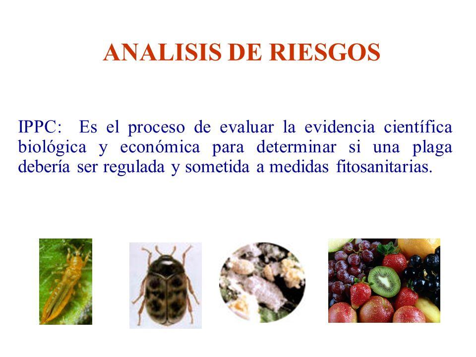 IPPC: Es el proceso de evaluar la evidencia científica biológica y económica para determinar si una plaga debería ser regulada y sometida a medidas fi