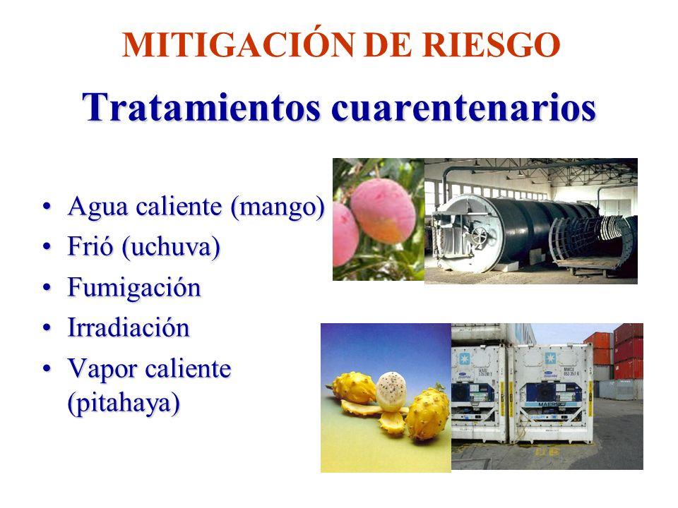 Tratamientos cuarentenarios Agua caliente (mango)Agua caliente (mango) Frió (uchuva)Frió (uchuva) FumigaciónFumigación IrradiaciónIrradiación Vapor ca