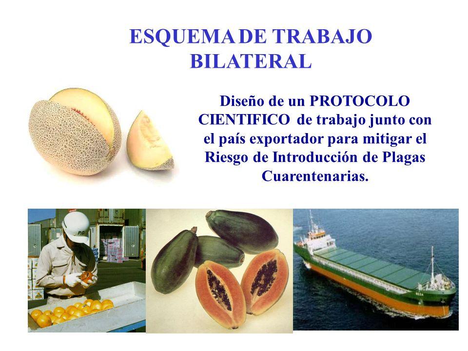 Diseño de un PROTOCOLO CIENTIFICO de trabajo junto con el país exportador para mitigar el Riesgo de Introducción de Plagas Cuarentenarias. ESQUEMA DE