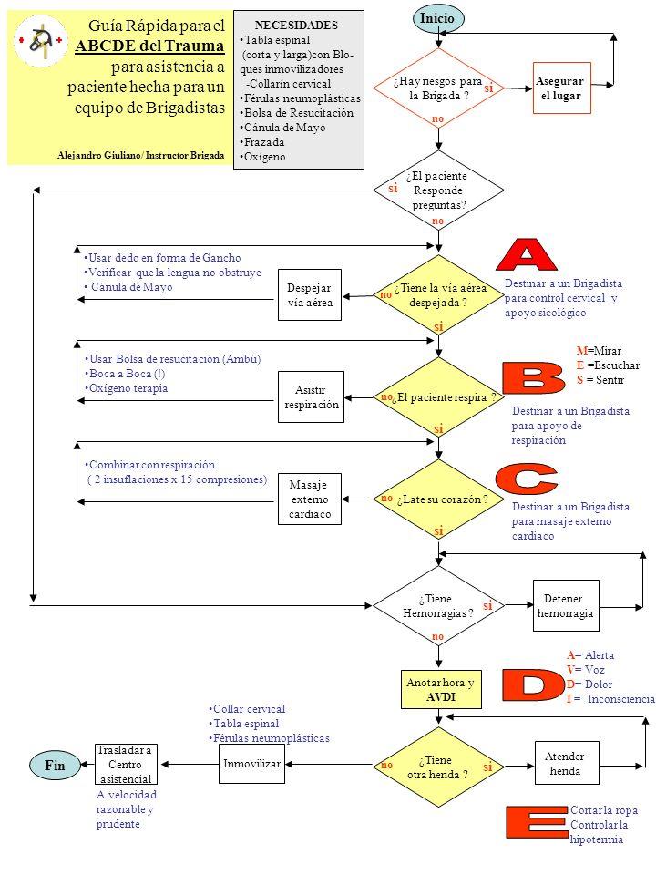 Guía Rápida para el ABCDE del Trauma para asistencia a paciente hecha para un equipo de Brigadistas Alejandro Giuliano/ Instructor Brigada Inicio ¿Tie