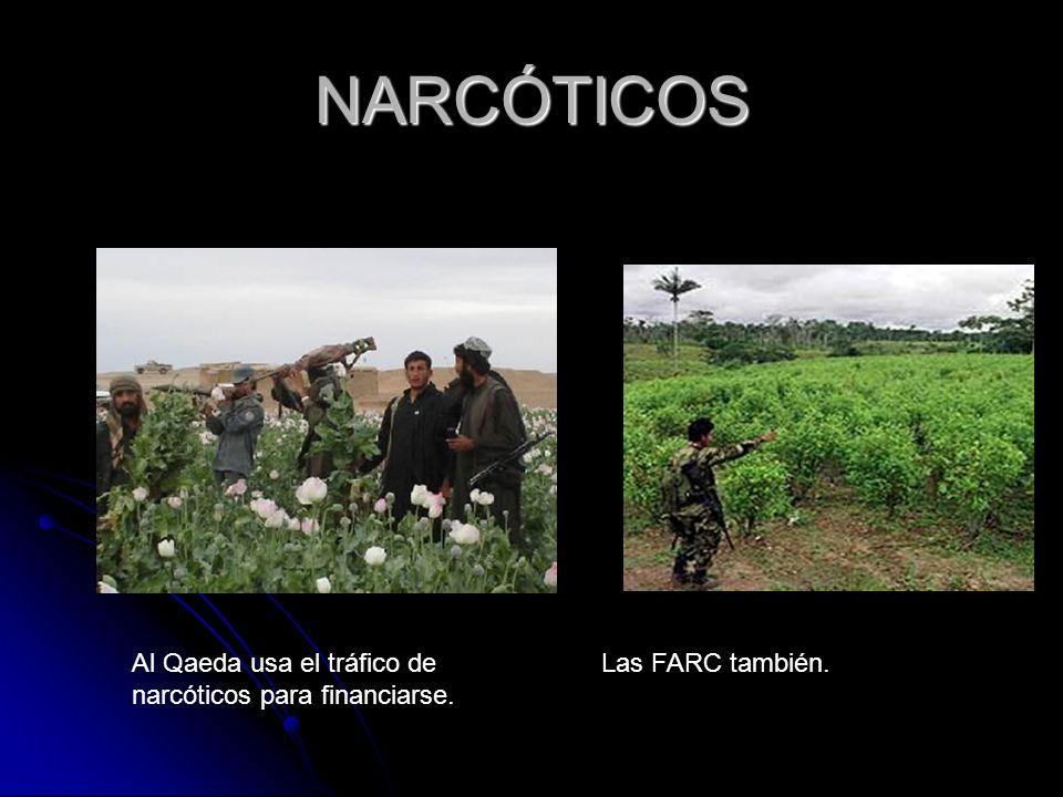 NARCÓTICOS Al Qaeda usa el tráfico de narcóticos para financiarse. Las FARC también.