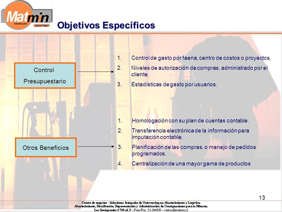 13 Control Presupuestario 1.Control de gasto por faena, centro de costos o proyectos.